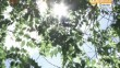 新闻夜航(都市版)20180803哈尔滨市道里区部分道路交通流量8月8日起调整