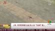 """上海:市民突发疾病大出血 热心小伙""""专业级""""救人"""