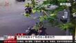 上海:男子开玩具卡丁车违法上路被处罚