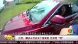 江苏:糊涂女司机买个假驾照 性别是男