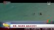 美国:海边游泳 鲨鱼近在咫尺