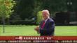 """美英两国首脑通话谈""""脱欧"""""""