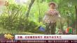安徽:垃圾桶里捡两万 原封不动交失主