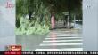 七台河突降暴雨 多部门齐救援