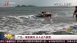 广东:海豚搁浅 众人合力救援