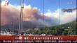 撤离!土耳其马尔马拉岛发生森林大火
