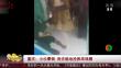 重庆:小伙晕倒 保安跪地抢救终唤醒