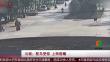 云南:鸵鸟受惊 上街逛飚