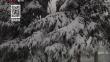 新闻夜航20190917 省内多地再迎降雪 提前开栓供暖