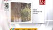 """哈市秋植2.8万余株 21个树种本月""""上岗""""("""