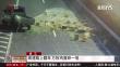 浙江:高速路上翻车 万枚鸡蛋碎一地