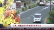 日本:加重处罚开车使用手机等行为