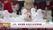 北京:银装素裹 故宫迎大批赏雪游客