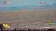 内蒙古:数千只野生黄羊中蒙边境迁徙