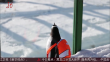 黑龙江:企鹅上门 拜访熊猫