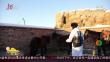 """新疆:零下32度 """"国门卫士""""骑马巡边关"""