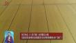 """张庆伟在《人民日报》发表署名文章 《扛起政治责任加快推动农业高质量发展 坚决当好维护国家粮食安全的""""压舱石""""》"""