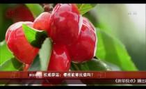 权威辟谣:樱桃能够抗癌吗?
