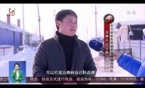 新闻联播20180131