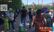 新闻夜航(都市版)20180619龙江绿飘香 点亮广食展