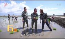 劳动最光荣20180620 穿越秀美青山来到黑龙江省富锦市