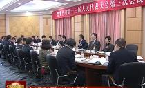 七台河代表团集中审议各项报告