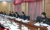 七台河代表团集中审议省政府工作报告