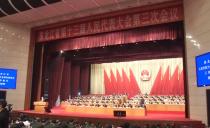 省十三届人大三次会议双鸭山代表团参加第二次全体会议