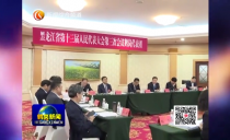 鹤岗代表团审议省《政府工作报告》聂云凌参加审议