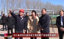 绥化:刘小妹到绥化新和成生物发酵产业园检查调研