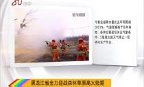 黑龙江省全力迎战森林草原高火险期