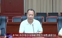 绥化市长张子林主持召开重点行业领域扫黑除恶专项整治推进会议