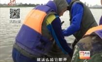 體驗漁政稽查 倡導生態保護