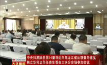 大慶:中央掃黑除惡第14督導組向黑龍江省反饋督導意見