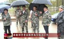 绥化市委书记曲敏到望奎县检查指导防汛工作