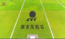 这就是黑龙江20190930