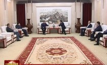 七台河市委书记杨廷双会见黑龙江科技大学专家