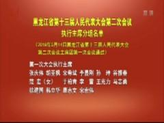 黑龙江省第十三届人民代表大会第二次会议执行主席分组名单