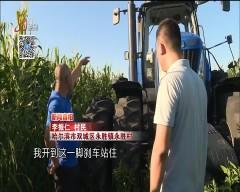 新闻真相20180828 意外发生在消夏夜