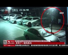哈尔滨:半夜偷电瓶 一宿十几块