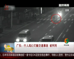 广东:行人闯红灯酿交通事故 被判刑