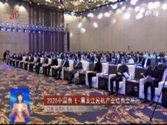 2020中国商飞-黑龙江民机产业培育会举行
