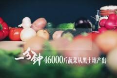 《振兴新龙江 奋进再启航》第二板块:现代农业迈出新步伐