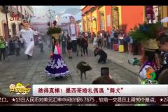 """跳得真棒!墨西哥婚禮偶遇""""舞犬"""""""