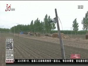 """绥化:线路占农田 终于要""""搬家"""""""