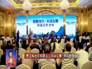 贾玉梅出席相聚龙江共谋发展-侨商合作会议