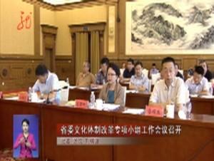 省委文化体制改革专项小组工作会议召开