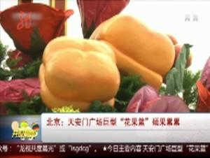 """北京:天安门广场巨型""""花果蓝""""硕果累累"""