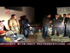 """西藏:""""越野车追赶藏羚羊""""涉事人员被处罚"""
