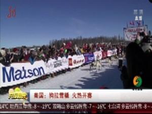 美国:狗拉雪橇 火热开赛